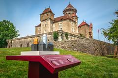 YGO_5734 (RawSavoyard) Tags: château montrottier aigles léman lovagny savoie haute pontverre 2019 rawsavoyard