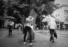 Rainy day (Bill Morgan) Tags: fujifilm fuji xpro2 23mm f2 bw jpeg acros alienskin exposurex4