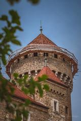 YGO_4892 (RawSavoyard) Tags: château montrottier aigles léman lovagny savoie haute pontverre 2019 rawsavoyard