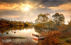 Rhinland (Jean-Michel Priaux) Tags: paysage landscape nature savage france europe rhin rhein river sun sunset sunlight poetric water trees forest priaux reflect lonesome alone littleboat cloud sly wet paint painting