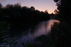 Crepuscule sur le Lez (Julien Coudsi) Tags: montpellier fleuve lez eau crepuscule couleurs soir coucherdesoleil nature végétation herbe aquatique plantes ambiance eos700d calme