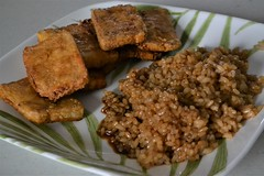 Teriyaki Tofu and Rice (Vegan) (Vegan Butterfly) Tags: vegetarian vegan food yummy tasty delicious teriyaki tofu rice plate dinner meal supper