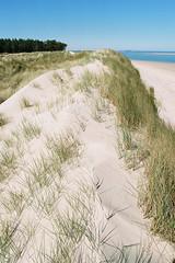Curracloe Beach (Luke Kwiatkowski) Tags: 200 2017 analog curracloe eos300 film fuji ireland raven superia wexford c200