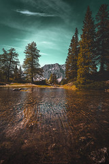 Looking trough the trees... (agialopoulos) Tags: landscape landschaft lake water austria zugspitze travel trees mountain mountains sky clouds natur nature nationalpark naturallight natural