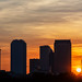 Tampa Skyline Tight Sunrise 4