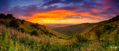 Summer sunset from Butser Hill, South Downs National Park, UK (Julian Gazzard) Tags: grass meon color nature dawn beauty panorama hill summer downs eastmeon butser outdoors green landscape tree uk valley view sun daylight sunlight scene sunset east sky scenery sundown outdoor south noperson evening natural dusk spring countryside blue colorful hants beautiful travel cloud mountain hampshire fairweather meadow light tourism southdowns field