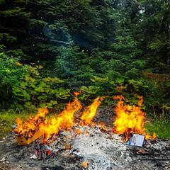 burn pile (rick.onorato) Tags: alaska burn pile fire forest ash