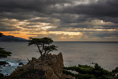 Moody Cypress (waves_and_wonders) Tags: 17miledrive art background beach beautiful beauty blue brown california clouds coast coastal coastalcolors colorful cover crashingwaves dramaticsky fineart forest gold heavenly landscape lastlight lonecypress lowclouds monterey montereybay moody moodysky nature ocean oceanic omnious pacificocean painterly pebblebeach photography rocks scenic sea seascape silhouette sky stormy sunset tourism travel trees unitedstates view water waves westcoast