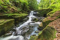 Healy Dell (mynameisblank!) Tags: nature water waterfall moss rocks leadinglines trees river lancashire rochdale flowingwater flowingriver 14mm