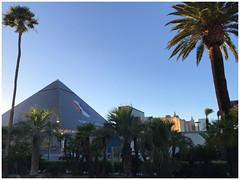 The Luxor - S Las Vegas Boulevard (Markus Alydruk) Tags: lasvegas nv nevada usa america madhare sincity clarkcounty theluxor hotel casino resort pyramid lasvegasboulevard thestrip palms palmtrees