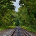 The Leading Line of a Railroad (Cuyahoga Valley National Park)