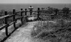 Bluffs (bingley0522) Tags: nikkormatftn micronikkor55mmf35 trix hc110h epsonv500scanner halfmoonbay sanmateocounty coastalcalifornia blufftrail autaut pacificocean
