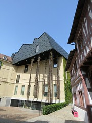 Basel Tour A (49) (FT.M) Tags: basel switzerland europe travel rhine river ducks castle tour beautiful tower cathedral gate moat hosts art architecture bridge