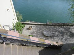 Basel Tour A (31) (FT.M) Tags: basel switzerland europe travel rhine river ducks castle tour beautiful tower cathedral gate moat hosts art architecture bridge