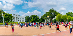 White House Tourists (Steven Green Photography) Tags: building canon districtofcolumbia washingtondc americana architecture clouds columns crowd effect gathering history landscape lanterns location outdoor panoramic path people sightseeing sky snapshot street streetphotography tiltshift tour tourism traveler trees walking walkway whitehouse