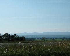 Ile d'Orléans and the Saint Laurent River valley (bd168) Tags: montagnes été mountains summer river fleuve island île farmland fermes road bluesky cielbleu voyage travel em5markii m1240mmf28pro haze autoroute motorway