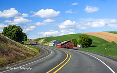 Palouse Scenic Byway (PhotoDG) Tags: palousescenicbyway palouse scenic byway washington landscape highway road field wheat wave 哥伦比亚流域 columbiabasin