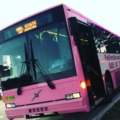 50 Pink Party Bus Sydney