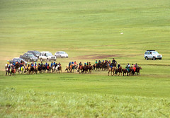 Contained cantering to the end of the course (kiwi vic) Tags: mongolia sergelen nomadic nomads horses horseracing trials