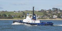 Watagan (~ydoc~) Tags: tug tugboat boat shipping tasports tasmania devonport