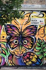 Street Art- Camden Town,  London (Rick & Bart) Tags: streetart graffiti art buckstreet london uk city urban camdentown rickvink rickbart canon eos70d butterflowl butterfly owl