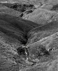 A burn (A small stream or river in Scotland) leads down to the River Garnock (wooiwoo) Tags: burn countryside deadtree monochrome northaryshire scotland stream summer shadows kilbirnie unitedkingdom