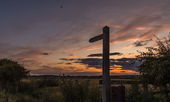 Public Footpath. (Ian Emerson (Thanks for all the comments and faves) Tags: england sunset farmland farming silhouette nottinghamshire countryside colourful canon6d nottingham signpost outdoor evening clouds harvest