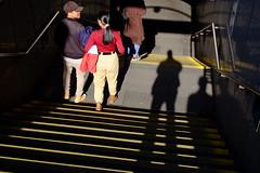 shadow selfie (jhnmccrmck) Tags: melbourne victoria jhnmccrmck fujifilm fujifilmxt1 parliamentstation stairs people xt1 xf1855mm shadowselfie