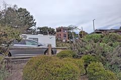 Monterey 6-28-19 (217) (Photo Nut 2011) Tags: monterey california andyjacobsenpark pacificgrove