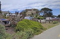 Monterey 6-28-19 (221) (Photo Nut 2011) Tags: monterey california berwickpark pacificgrove