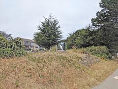 Monterey 6-28-19 (231) (Photo Nut 2011) Tags: monterey california berwickpark pacificgrove