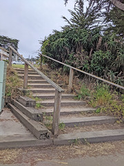 Monterey 6-28-19 (233) (Photo Nut 2011) Tags: monterey california berwickpark pacificgrove