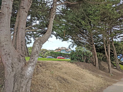 Monterey 6-28-19 (234) (Photo Nut 2011) Tags: monterey california berwickpark pacificgrove