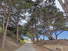Monterey 6-28-19 (235) (Photo Nut 2011) Tags: monterey california berwickpark pacificgrove