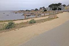 Monterey 6-28-19 (320) (Photo Nut 2011) Tags: monterey california pacificgrove andyjacobsenpark