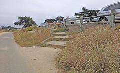 Monterey 6-28-19 (329) (Photo Nut 2011) Tags: monterey california pacificgrove andyjacobsenpark