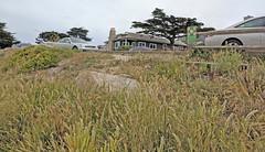 Monterey 6-28-19 (330) (Photo Nut 2011) Tags: monterey california pacificgrove andyjacobsenpark