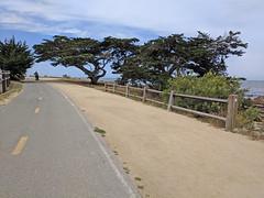 Monterey 6-28-19 (223) (Photo Nut 2011) Tags: monterey california berwickpark pacificgrove