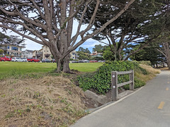 Monterey 6-28-19 (228) (Photo Nut 2011) Tags: monterey california berwickpark pacificgrove