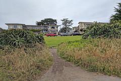 Monterey 6-28-19 (230) (Photo Nut 2011) Tags: monterey california berwickpark pacificgrove