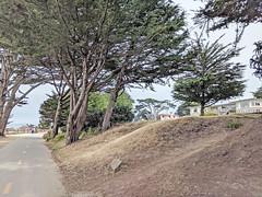 Monterey 6-28-19 (311) (Photo Nut 2011) Tags: monterey california pacificgrove berwickpark