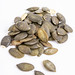 Dried saulty Pumpkin Seeds above white background
