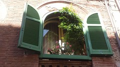 O p e n (Ladyhelen_) Tags: window green toscana italy italylover open words colors dreamer dreaming quotes summer greenwindow architectute building palazzo house