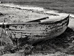 """In the end we only regret the chances we didn't take..."" (fl_mala) Tags: ilovegreece greece lifeisbetterontheisland boat wildsea sea cyclades parosisland boatlife greekislands discovergreece travel"