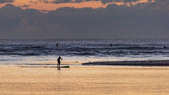 Where Creek Meets Ocean (armct) Tags: sunrise cloud golden purple horizon silhouette surf waves surfbeach estuary calm serene contrast sandbar shoal creek ocean pacific currumbin paddleboard surfer paddleboarder mouth morning gloomy beach seagulls landscape seascape beachscape storm rainfront front depthoffield dof telephoto