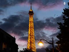 Eiffle tower (S Hancock) Tags: sony a7 beautiful eiffel tower lights night moon birds sky paris france
