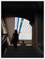 Les marches du savoir. (francis_bellin) Tags: olympus espagne streetphoto street couloir photoderue étudiantes étudiants escalier lumières couleur ombre faculté ville 2019 séville andalousie