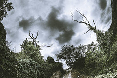 LAS PUERTAS DEL INFIERNO (T.Miravalles) Tags: rioseco castillayleon burgos sigma10mm 10mm ojodepez canon7dmkii 7d canon naturaleza árbol cielo montaña ebro monasteriodesantamaría nubes explore inexplore explored20190720