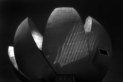 Iconic Architecture (HWHawerkamp) Tags: heart shape architecture art and craft singapore museum asm black white travel graphics abstract