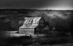 Ozark Barn (Wits End Photography) Tags: view eminence natural foliage season nature blackwhite horses rural fall picturesque animal black leaves colors country wildhorses monochrome grey trees scenic gray blackandwhite color bw autumn landscape white leaf outdoor outside plant tree vegetation